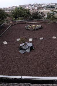 Nuestro Techo Verde hecho por los jóvenes del Campo de Verano